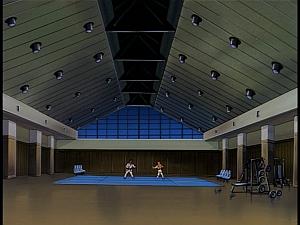 Disney Gargoyles - Outfoxed - eyrie building dojo gym